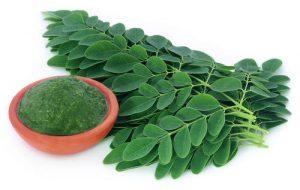Moringa – commenti – ingredienti – erboristeria – come si usa – composizione